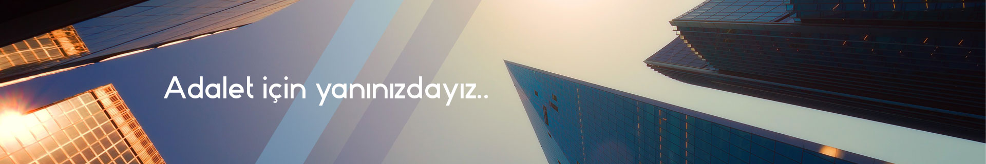 banner-homepage-new